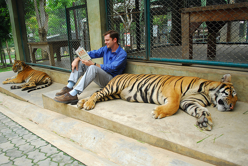Chris with Tigers