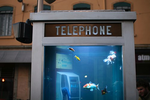 Aquarium-phone-booth-2