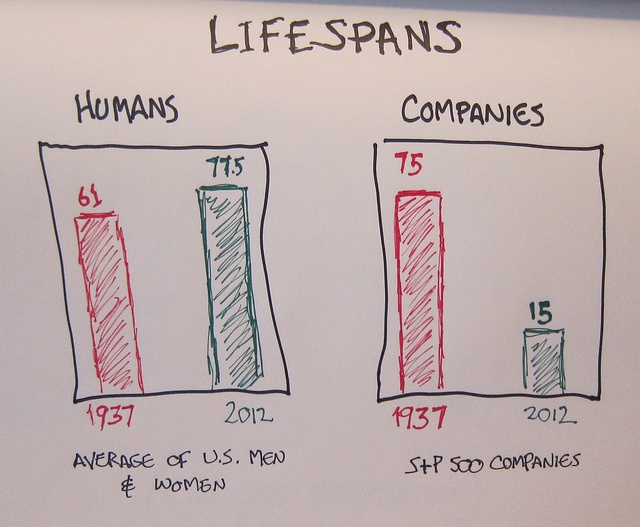 Life Spans of Companies and People