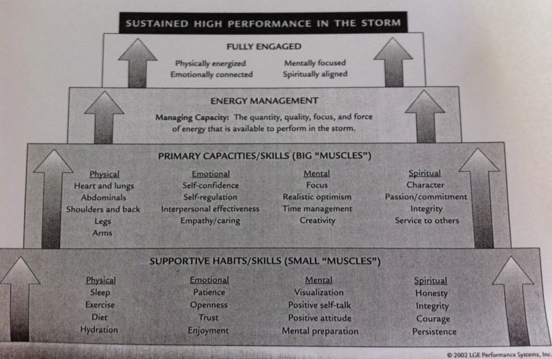 Sustained High Performance_LGE