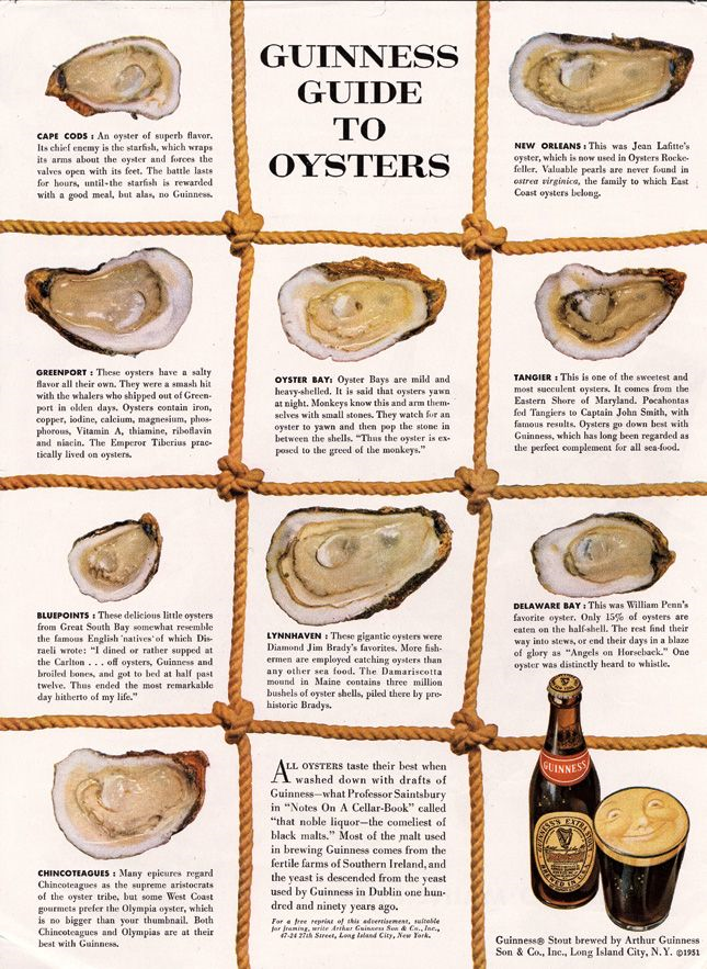 Ogilvy Guiness Guide to Oysters