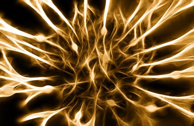 Brain synapses