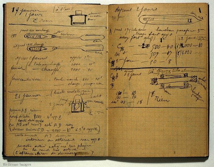 Marie-curie-notebook