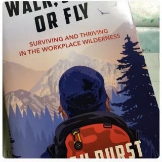Walk climb fly