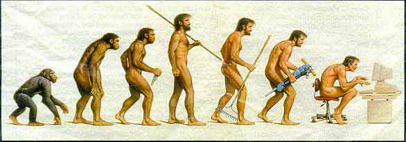 Evoltuion of Man